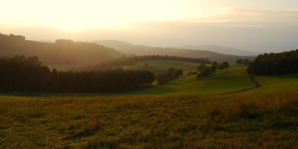 Oberhalb von Ruckersfeld (Foto: Christa Hees)