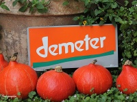 Demeterhof