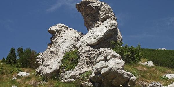 Dvoglava stijena u Modrić dolcu