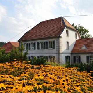 Garten im Jagdschloss Karlsbrunn