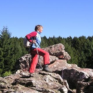 Der Felsenweg am Bärenfels