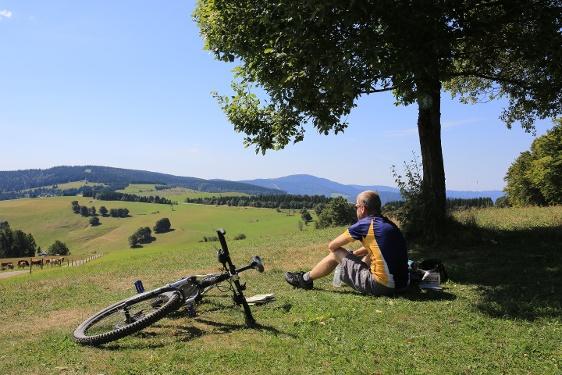 Durch traditionsreiche Schwarzwalddörfer