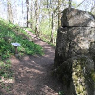 Keltenstein unterhalb des Schaumbergplateaus