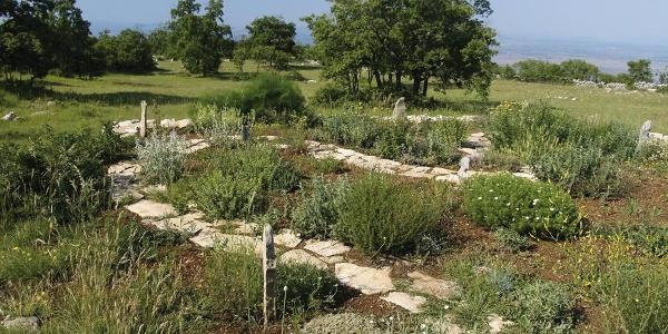Botanički vrt pokraj planinarske kuće Promina