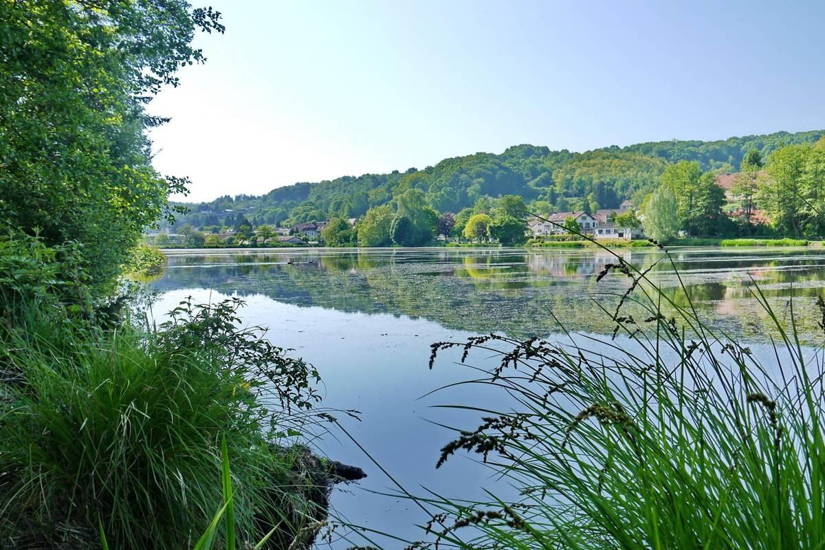 Würzbacher Weiher mit Blick auf Anglerheim