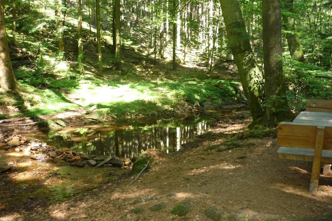 Beste Spielothek in Hochwald finden