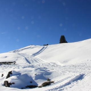 Kurz vor dem Gipfel.