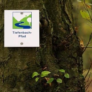 Der Tiefenbachpfad