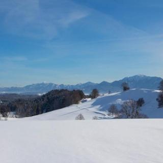 Winterwanderung - Rantscher Weiher