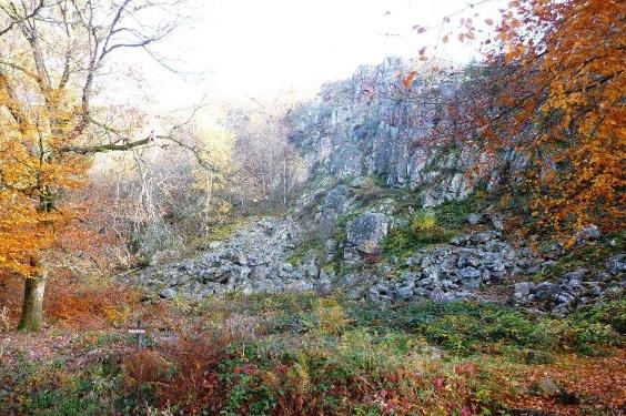 Nationalparktraumschleife Hubertusrunde