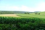 Feld- und Wiesenlandschaften