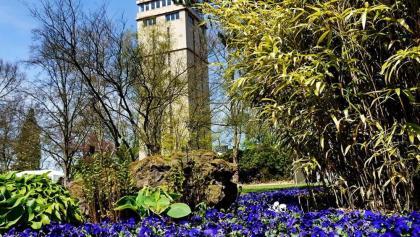 Blumengarten mit Hindenburgturm