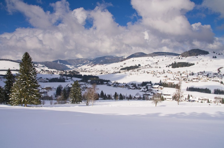 Winter - Bernau Schwarzwald: Loipenhaus-Rundweg oberhalb von Oberlehen