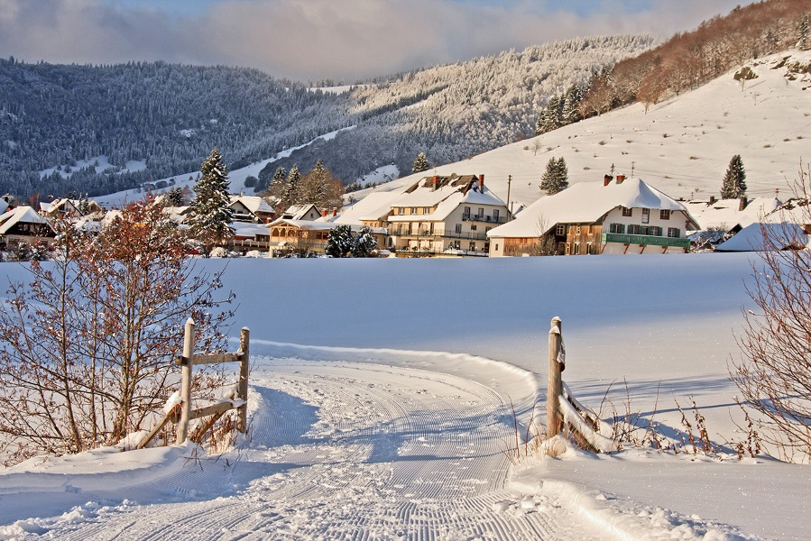 Winter - Bernau Schwarzwald: Albweg - von Weierle nach Hof