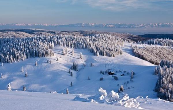 Winter - Bernau Schwarzwald: Von Bernau, Ortsteil Dorf zum Berggasthaus Krunkelbach-Hütte