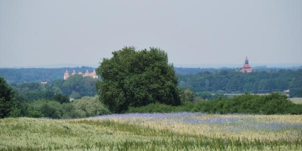 Blick von der Wahnsdorfer Höhe nach Moritzburg