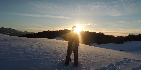 Winterwanderung zur Siedelalpe