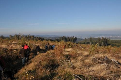 Große Tour auf der Sauerland-Waldroute