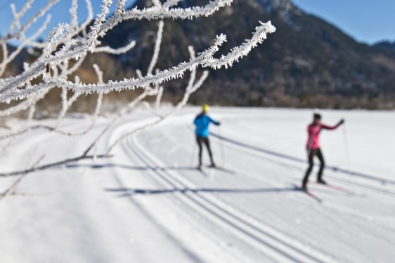 Cross-country ski route – Scherenau tour
