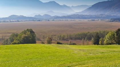 Murnauer Moor im Blauen Land