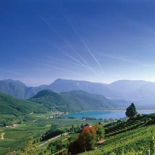 Itinerario Centro, Vino & bici: Pinot bianco e Schiava