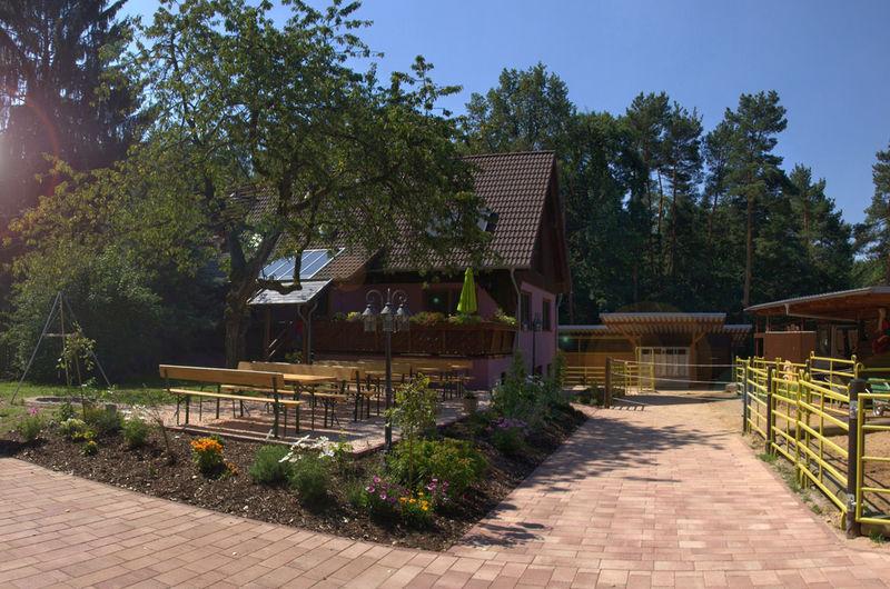 Waldhaus in Violas Wunderwald