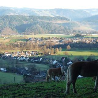 Blick vom Giersberg