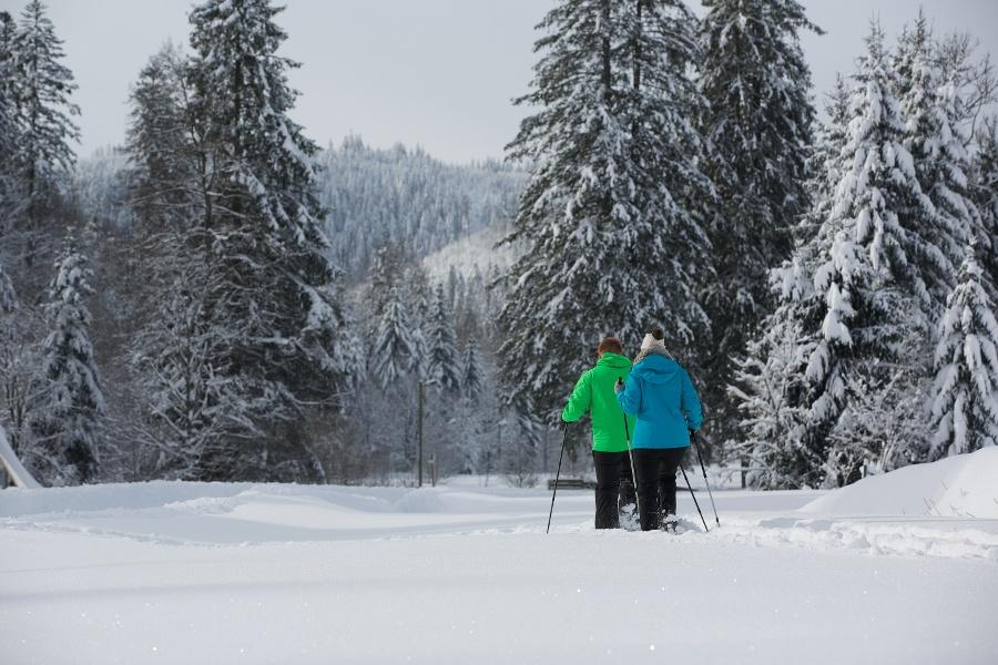 Schneeschuhtour im Buhlbachtal