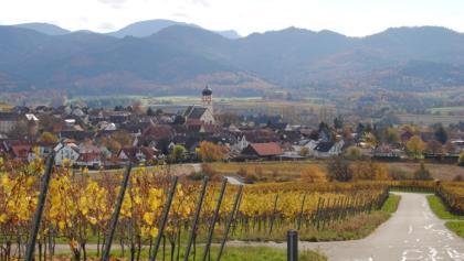 Blick auf Kirchhofen