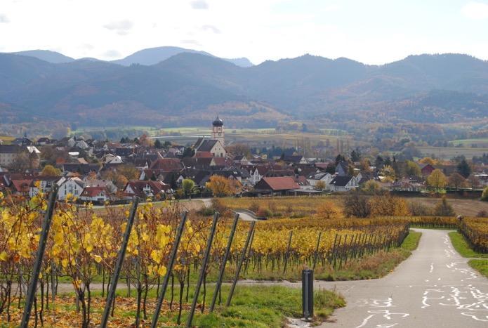 Rennrad Tour quer durch das Markgräflerland von Badenweiler aus Nr.2