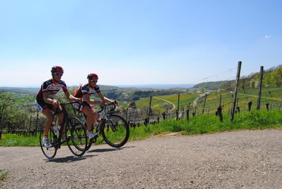 """Rennrad Tour """"The hell of Markgräflerland"""" von Badenweiler aus"""