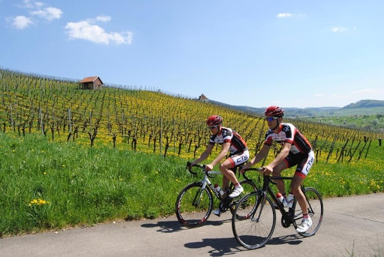 Rennrad Tour  durch das Markgräflerland flach und gemütlich von Badenweiler aus