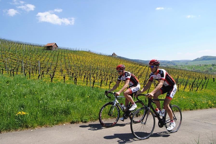 Rennrad Tour durch das Münstertal von Badenweiler aus