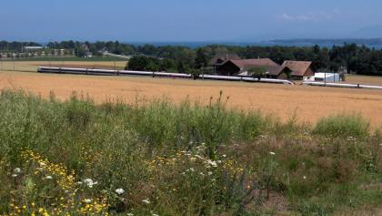 Crans-près-Céligny, Chemin du Bois Neuf: Charlemont