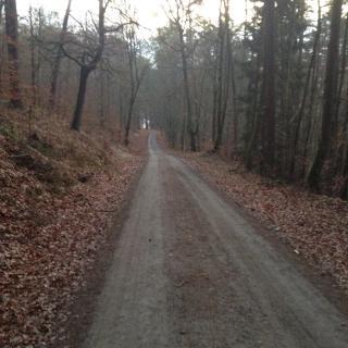 Bergauf zum Eixelberg