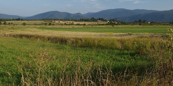 Plaščanska dolina