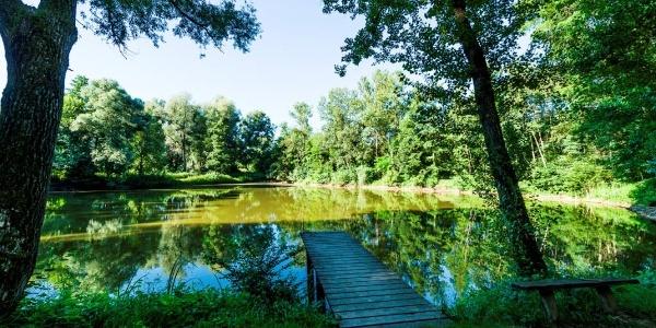 Wasserweg - Blick in die Murauen