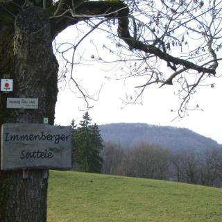 Blick vom Im(m)enberg zum Schönberg (Schönbergturm)
