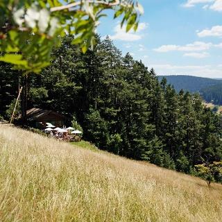 Blockhütte im Tonbachtal