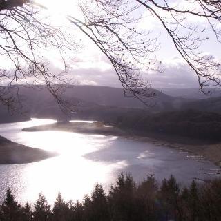 Blick auf den Rursee (Dez. 2011, als die kleine Liebesinsel eine Halbinsel war)