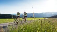 Schönwald - Rundtour um den Rohrhardsberg