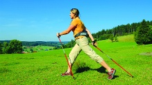 Schonach - Nordic-Walking-Tour 2