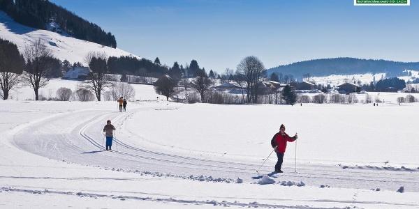 Blick auf die Loipe zwischen Ortsteil Hof und Dorf in Bernau im Schwarzwald. Foto: Michael Arndt