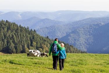 Schönwald - Schneckenwanderung