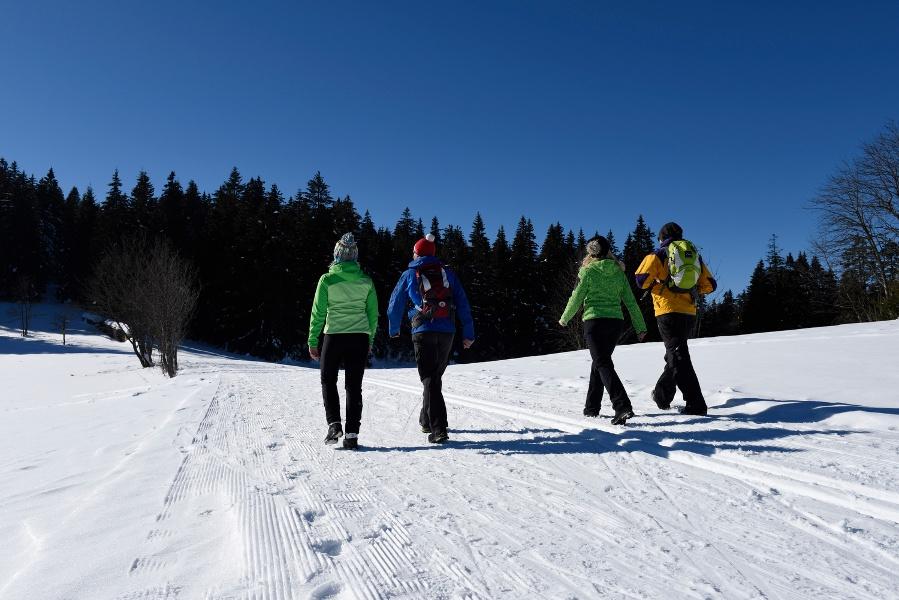 Schonach Tour 3 - Panorama-Wanderung Blindensee