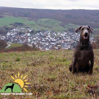 Blick auf Heimersheim