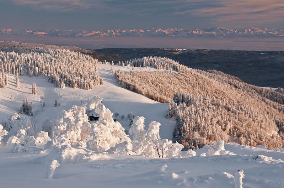 Winter - Bernau Schwarzwald: Von Bernau, Ortsteil Hof, zum Berggasthaus Krunkelbach-Hütte