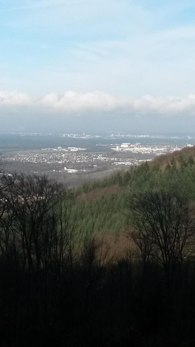06.01.2016 Vorbergzone Malsch/Waldprechtsweier