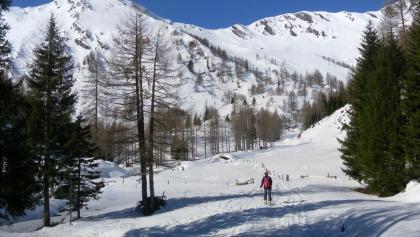 Lechneralm, links Plankowitzspitze, rechts Barleitenkopf