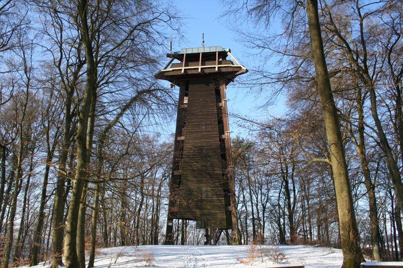 Waldshut-Tiengen: Auf den Vitibuck mit Aussichtsturm
